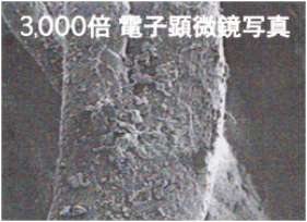 体温1℃ UP「イオンドクター」やみつきレッグウォーマー
