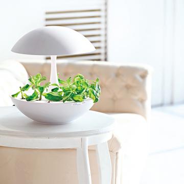 [Akarina]LED水耕栽培Akarina01【ドーム型】
