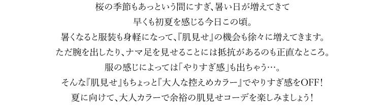 Vol.5 「大人な」カラーコーデ リードテキスト